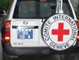 Diplomatic plate. CD = Corps Diplomatique / Diplomatic Corps<br>I.C.R.C. = International Committee of the Red Cross<br>Submitted by a guy from Belgium